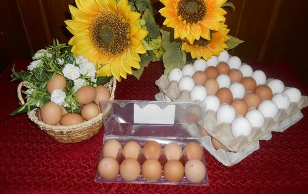 Яйца куриные производства белорусской птицефабрики